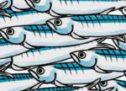 Sueques, sardines i sindicats